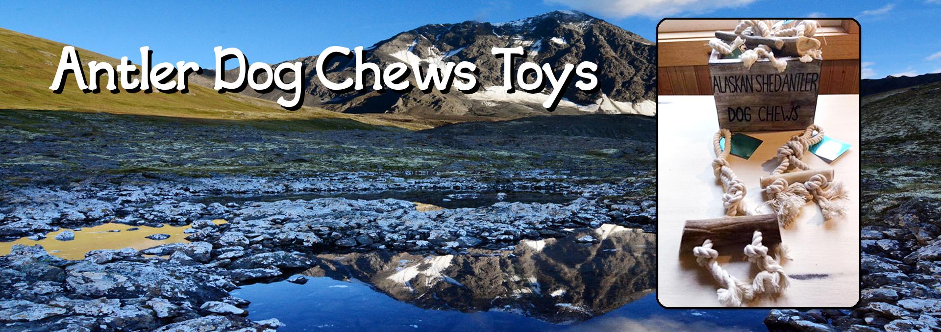 Antler Dog Chew Toys
